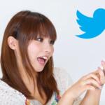 SimpleTweetが使えなくなったので、WordTwitに切り替えてみました