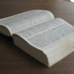 SafariやiBooksで使える辞書機能がiOS7でパワーアップしていたようです。