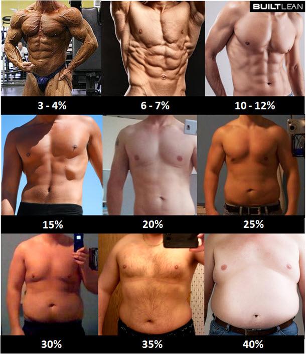 体脂肪率と体の変化(男性版)