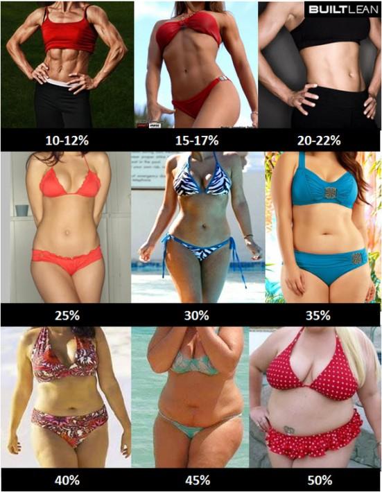 体脂肪率と体の変化(女性版)