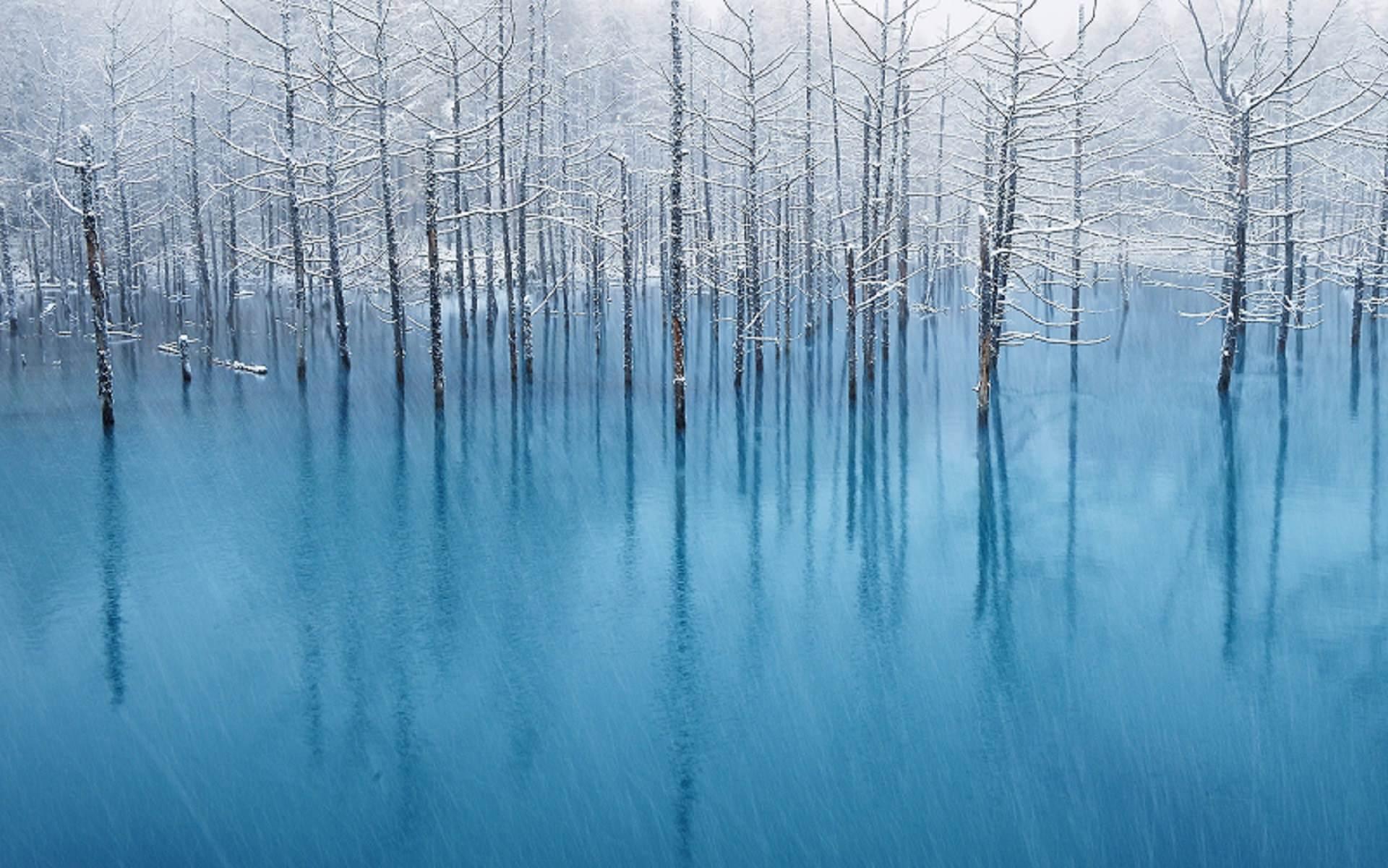 mac 青い池 壁紙 北海道