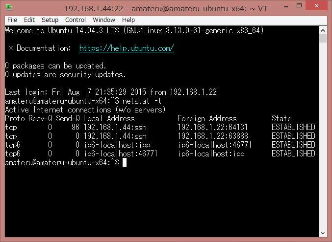netstat -t tcp接続の確認