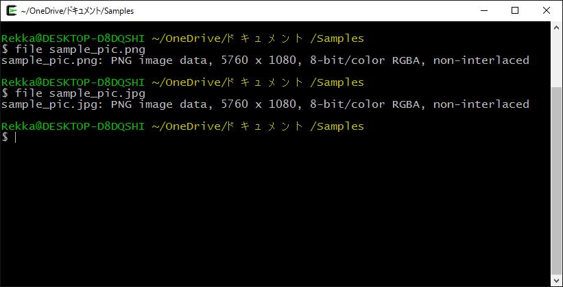 linux fileコマンドの実行 バージョン2