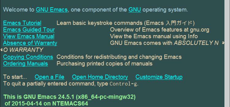 CygwinからNTEmacsを起動する設定 (PATH設定)