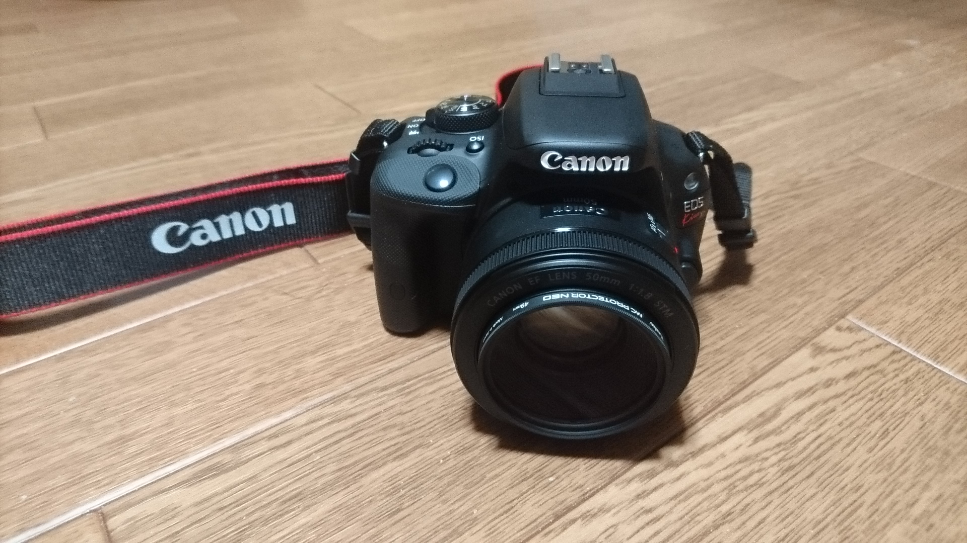Canon EOS Kiss X7 + EF50mm STM